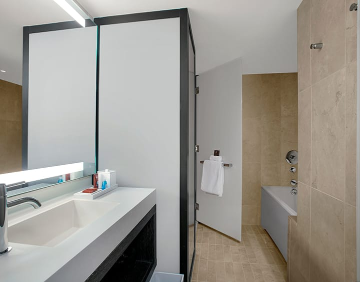 Executive Suite Living Bathroom